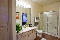 Vintage Apts Model Bathroom 1 (900x601).jpg