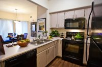 Vintage Apts Model Kitchen (900x601).jpg